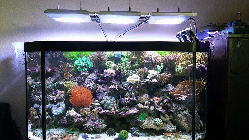 ati sirius serie die neue led beleuchtung kleiner vorgeschmack seite 23 ati aquaristik. Black Bedroom Furniture Sets. Home Design Ideas